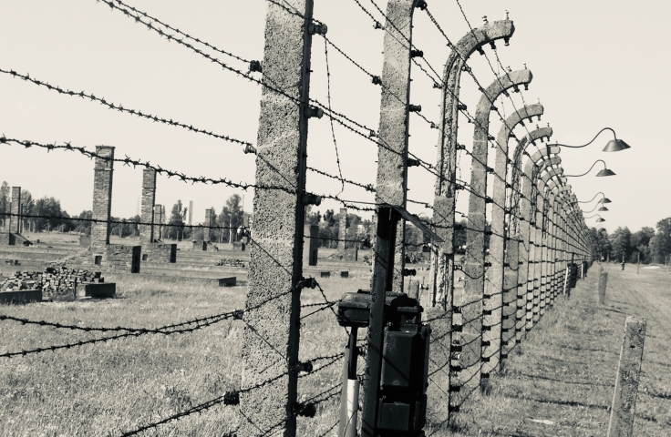 Detention Camps: Internment in Comparative Frames
