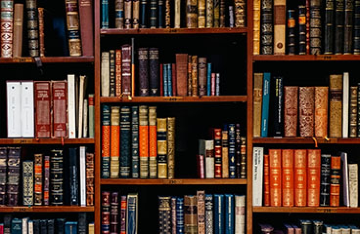 Close-up of bookshelf with academic novels