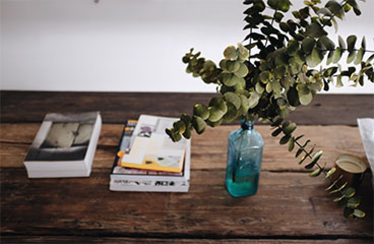 Green plant in blue vase and books on timber desk