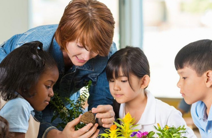 three students with a teacher observing plants